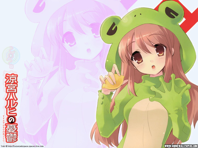 The Melancholy of Haruhi Suzumiya Anime Wallpaper #26