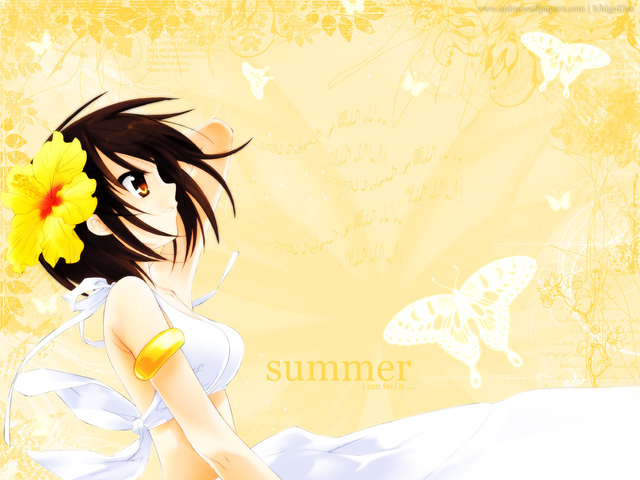 The Melancholy of Haruhi Suzumiya Anime Wallpaper #29