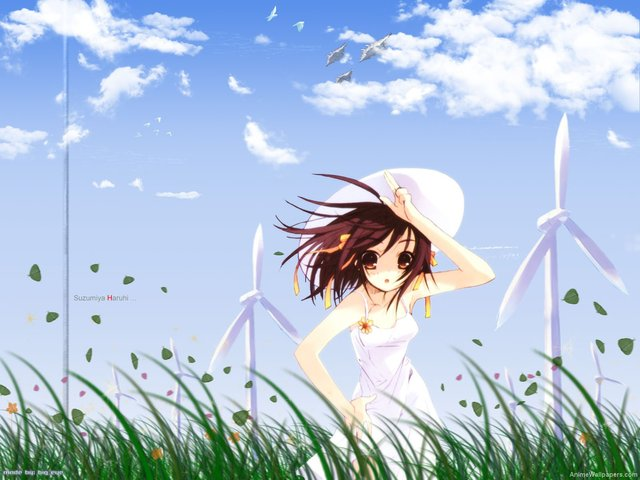 The Melancholy of Haruhi Suzumiya Anime Wallpaper #5