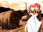Tsukihime - Lunar Legend anime wallpaper at animewallpapers.com