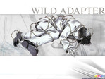 Wild Adapter Anime Wallpaper # 1