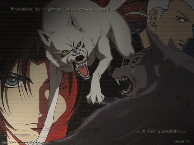 Wolf's Rain Anime Wallpaper #1
