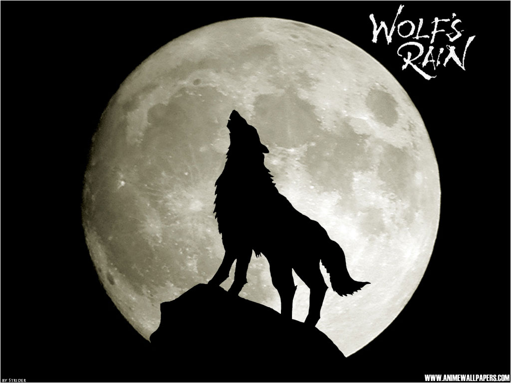 Wolf's Rain Anime Wallpaper # 4