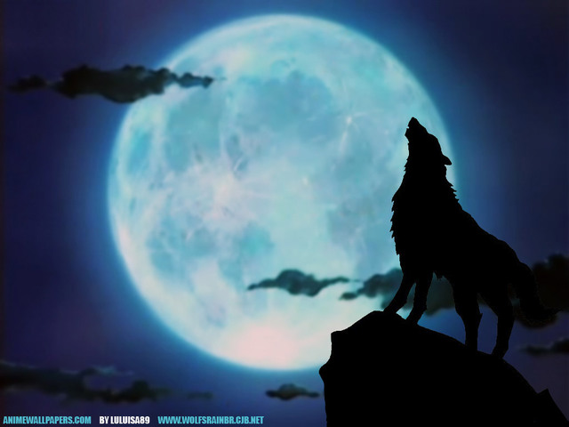 Wolf's Rain Anime Wallpaper #7