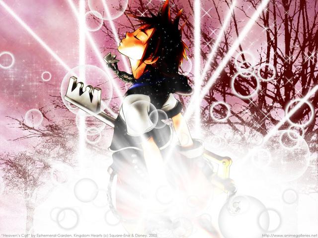 Kingdom Hearts 2 Anime Wallpaper #10