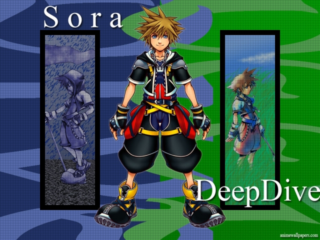 Kingdom Hearts 2 Anime Wallpaper #3