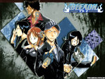 Bleach Anime Wallpaper # 15