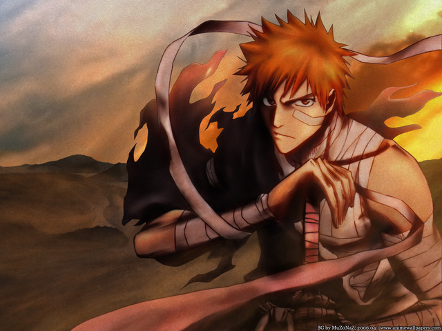 Bleach Anime Wallpaper #53