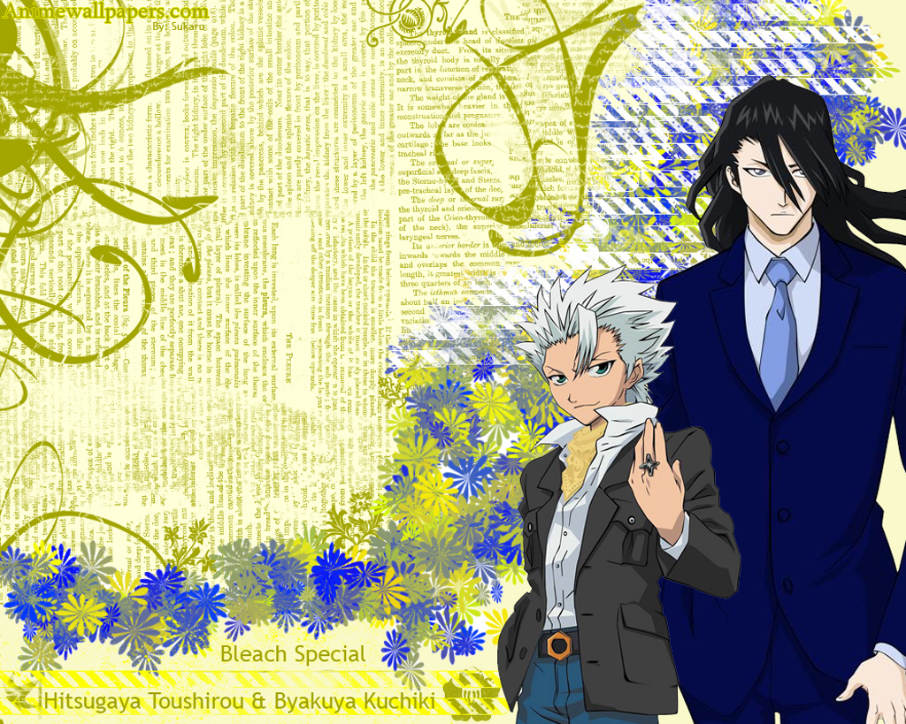 Bleach Anime Wallpaper # 72