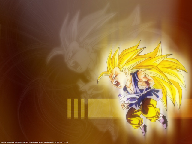 Dragonball Z Anime Wallpaper #22
