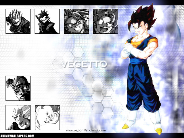 Dragonball Z Anime Wallpaper #35