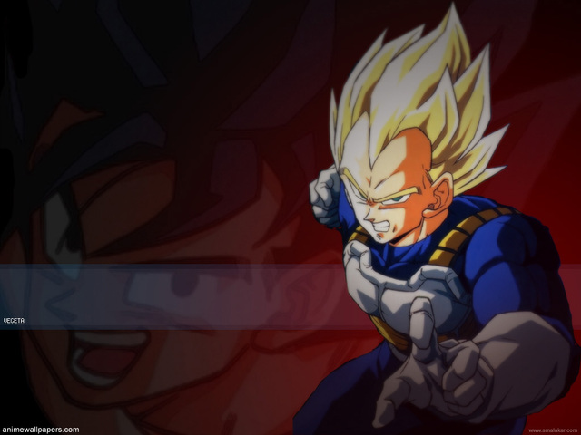 Dragonball Z Anime Wallpaper #43