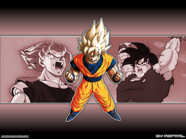 Dragonball Z Anime Wallpaper #53