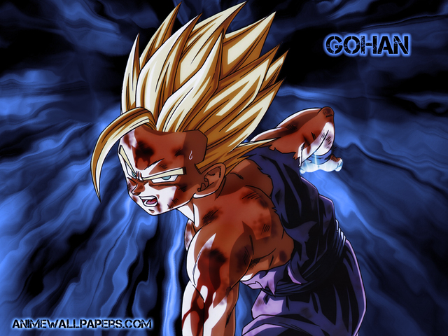 Dragonball Z Anime Wallpaper #70