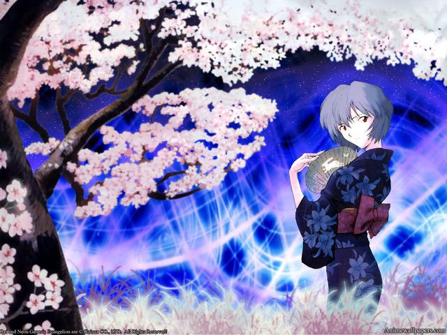 Neon Genesis Evangelion Anime Wallpaper #89