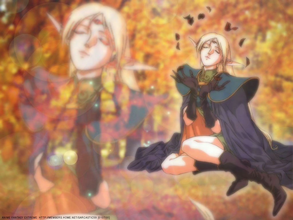 Record of Lodoss War Anime Wallpaper # 11