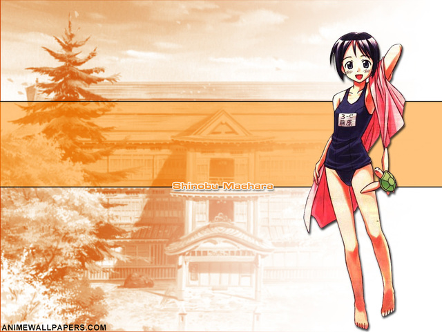 Love Hina Anime Wallpaper #30