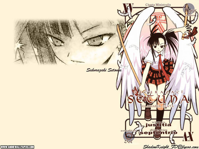 Negima Anime Wallpaper #17