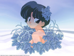 Ranma 1/2 Anime Wallpaper # 10